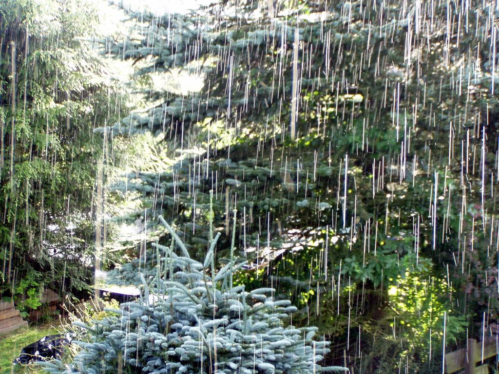 Wetter regen